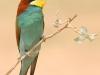 ptacek192