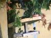 img_7708_krmitko_obsazeno-a6a4993fba229307a954139f729e4858553ec805