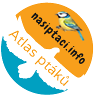 logo_nasiptaci1